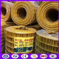 Quality Yellow color PVC coating Holland wire mesh fence 30mmx30 mm Hole opening ​ in 1.2 meter height for sale