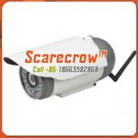 Buy Wireless microwave camera Waterproof infrared night vision wireless ip camera Scarecrow™ at wholesale prices