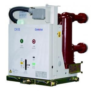 Vacuum Circuit Breaker CKVB-12/G