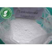 Quality Powerful Steroids Hormone Testosterone Enanthate for Bodybuilding Cas 315-37-7 for sale