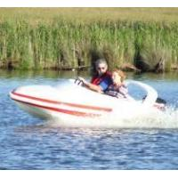 Quality water mouse boat for sale