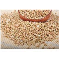 Quality High-quality  buckwheat kernels  with more competitive price from Original place for sale