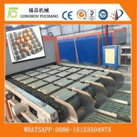 Quality Fully Automatic paper egg tray forming machinery-Whatsapp:0086-15153504975 for sale