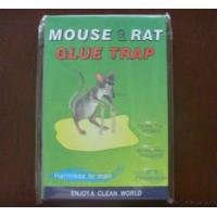 Quality Mouse Glue Trap, Rat Glue Carboards for sale