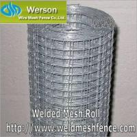 Quality Welded Mesh,Welded Mesh Roll,Welded Mesh Panel,Welded Wire for sale