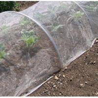 Quality Plastic Agricultural Greenhouse Anti Aphid White Fly Insect Net For Vegetable Protection for sale