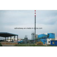 Coal, Gas, Solid Waste Mixed Burning Boiler
