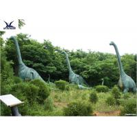 Quality Sunproof Life Size Dinosaur Models For Science And Technology Exhibition for sale