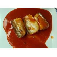 China Pacific Mackerel Fish Canned Food In Hot Chili Tomato Sauce ISO Certified on sale
