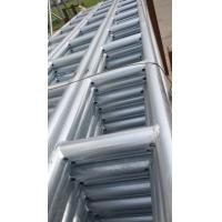 Quality Printable Scaffold Ladder Beam Capacity Tag Material Specification, Ladder Beam for sale