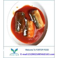 China Factory Price Premium China Canned Mackerel Fish in Tomato Sauce on sale