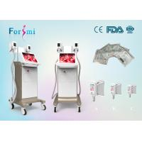 Quality best cellulite removal machine 3.5 inch Cryolipolysis Slimming Machine FMC-I Fat Freezing Machine for sale