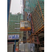 Quality According to European Standard and Truly modular Construction Site Hoist for sale