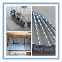 "Quality BWG 9 gaugex2.5"" roofing nails, galvanized with unbrella head for sale"
