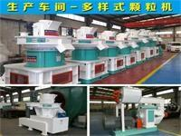China China hot sale  auger bird feed granulator for sale in Iraq------Jingerui machinery on sale
