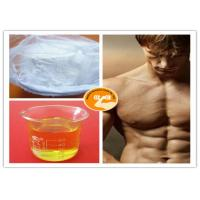 Quality TM Blend 500 Steroid Injection Oil Bulking / Cutting Cycle Mixed Injection Gear for sale