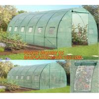 Quality polycarbonate plastic sheet agricultural mini garden green house,plastic walk in dome garden green house, SUPPLIES, PAC for sale