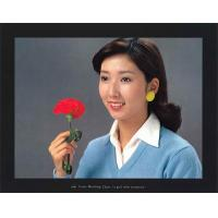 Quality 3NH ITE Color Matching Chart (a girl with carnation) for sale