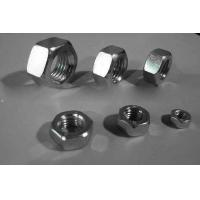 China Hot Galvanizing Surface M5 Galvanized Hex Nut SS Material For Home Decorating on sale