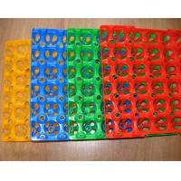 Quality Disposable plastic egg trays for sale China Plastic Egg Trays for sale