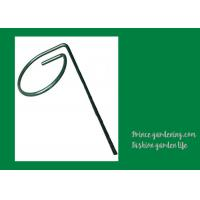 Quality Metal Garden Green Plant Supports for sale
