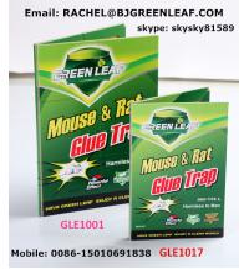 Quality Household Product Rat Mouse Glue Traps,Mouse Glue Trap  Email: rachel@bjgreenleaf.com for sale