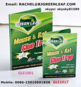 Quality Mouse Glue Trap,rat mouse glue traps  SKYPE ID: skysky81589  Mobile: 0086-15010691838  Email: rachel@bjgreenleaf.com for sale