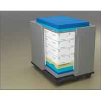Quality Cooler Cold Chain Packaging Box With EPP for sale