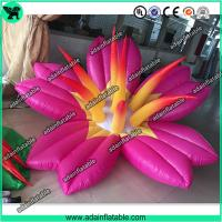 Quality Pink Inflatable Flower With LED Light,Event Party Inflatable Flower Customized for sale