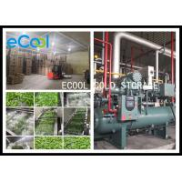 Quality Low Temperature Multipurpose Cold Storage For Vegetable Processing PU Panel for sale