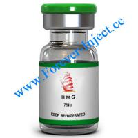 China HMG | Peptide - Forever-Inject.cc Online Store | 75iu | Human menopausal gonadotropin on sale