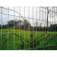 Holland Electric Welded Wire Mesh/Wave-Shaped Wire Mesh/Wavy Mesh
