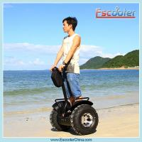 Quality resort cart electric two wheels self balancing scooter for sale