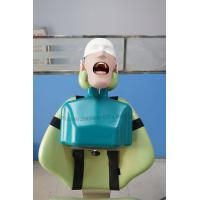 China ZL-DTD3 Dental Training Head Simulator Manikin with Torso wholesale