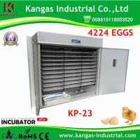Quality Holding 4224 Egg Incubator Chicken Incubator Egg Hatching Machine Ce Approved for sale
