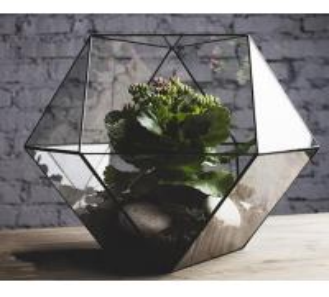Quality art glass flower holder, terrarium planter, geometric glass terrarium for sale