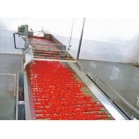 Quality Customized Capacity Tomato Paste Production Machinery With Multi Function Crushing Action for sale