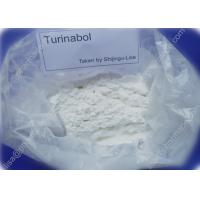 Pro Turinabol Raw Testosterone Powder Aid in Maintaining Strength While Dieting