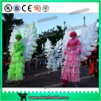 Quality Beautiful Festival Holiday Event Parade Walking Inflatable Wing Costume Customized for sale