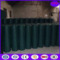 Quality Plastic Chicken Wire Mesh for sale