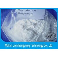 Quality CAS 57-85-2 White Testosterone Anabolic Steroid , Muscle Enhancing Steroids Test Prop for sale