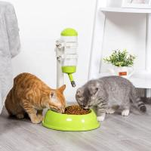 China Detachable Automatic Pet Food Dispenser Customized Logo Plastic Material on sale