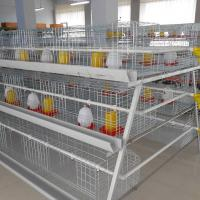 Buy Chicken Poultry Broiler Layer Farm Equipment For Sale Baby Chick Cage With Poultry Nipple Drinking Water System at wholesale prices
