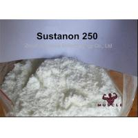 Quality Yellow Liquid Sustanon 250 Powder Injectable Anabolic Steroids 400mg/ml for Mass Gaining for sale