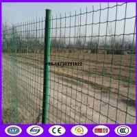 Quality China ready stock 50 x50 mm euro fence mesh Pvc coating made in china for sale