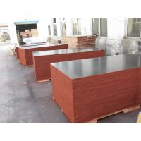 Buy Film Faced Decorative Plywood Sheets 2 Times Hot Press High Strength Design at wholesale prices