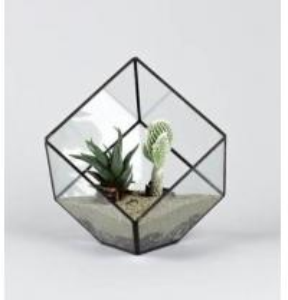 Quality geometric terrarium glass indoor flower pots for sale
