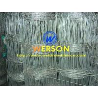 Quality Field Fencing From Werson Wire Mesh Fence for sale