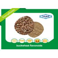 Quality Brown Yellow Fine Powder Natural Herbal Extracts Reduce Blood Sugar Buckwheat Seed Extract for sale