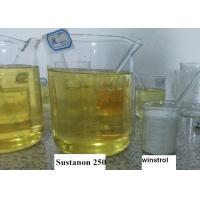 China Yellow Liquid Testosterone Sustanon 250 , Testosterone Supplements For Muscle Gain on sale